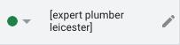 Google Ads keyword - expert plumber leicester (exact match type)